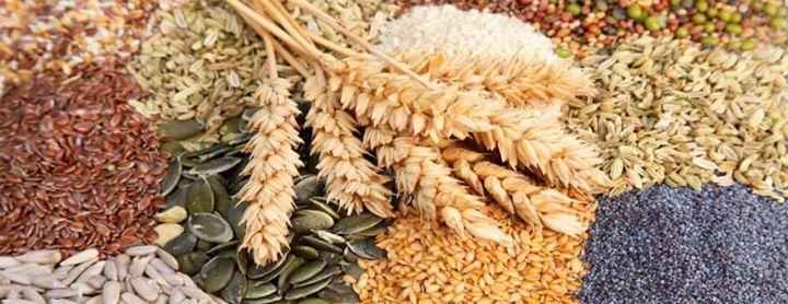 Os 4 melhores grãos integrais para diabéticos