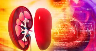 Pressão alta e diabetes são principais causadores de doença renal