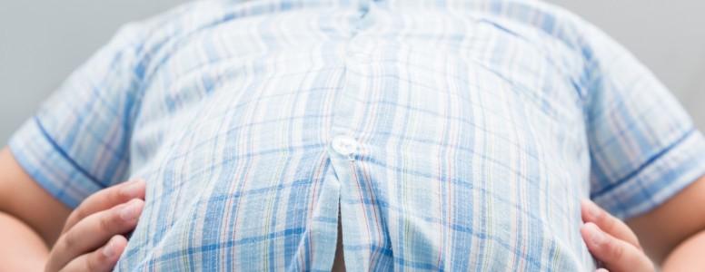 Novo Estudo Apresenta Informações Sobre como o Excesso de Gordura pode Levar à Síndrome Metabólica