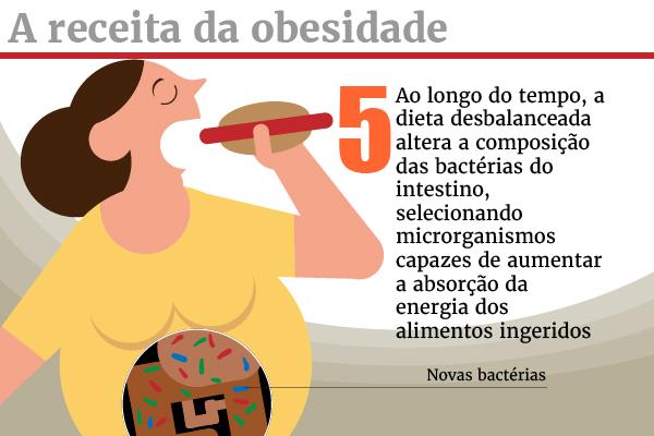 galeria_receita_obesidade_5-100