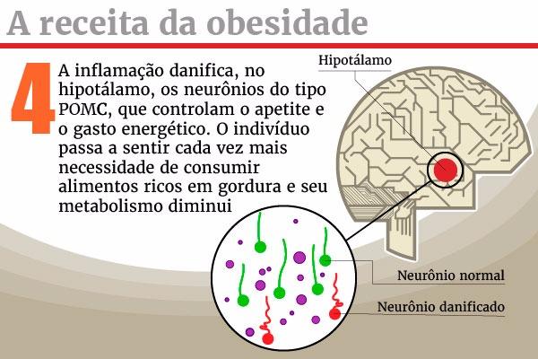 obesidade-ficha4 (1)