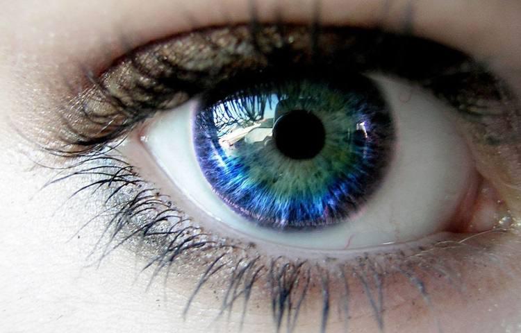 Dia Mundial da Visão: Entidade Alerta para a Prevenção da Cegueira e Destaca Cuidados com a Saúde dos Olhos