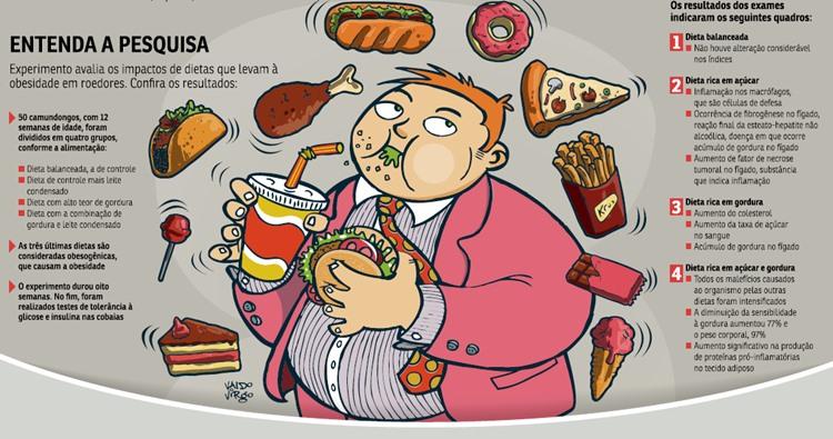 Dietas que Combinam Excesso de Açúcar e Gordura são as Mais Prejudiciais