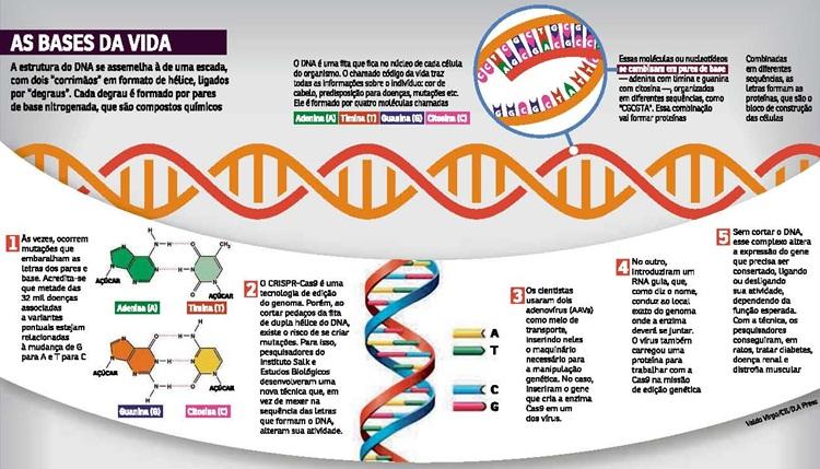Técnica de Reparo do DNA Pode Tratar Problemas como Doença Renal e Diabetes