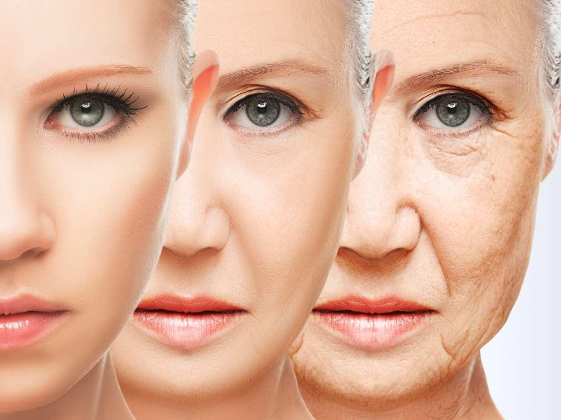 As proteínas anti-envelhecimento podem tratar diabetes, obesidade e câncer