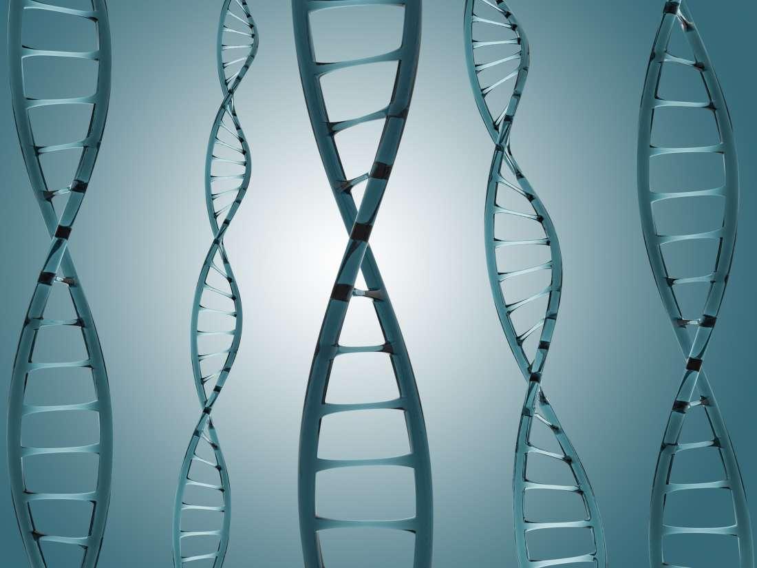 """Diabetes Tipo 2: Cinco """"Grupos"""" Genéticos Podem Explicar a Evolução"""