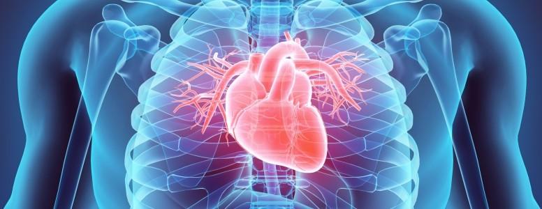 Risco de Doenças Cardiovasculares em Mulheres com Diabetes Tipo 2 Não São Tão Altas Quanto Se Temia