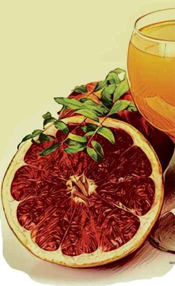 Substâncias de frutas cítricas reduzem efeitos nocivos de dietas gordurosas