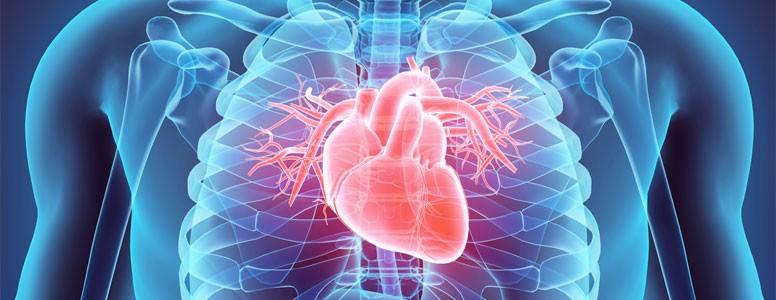 BHF Aumenta a Conscientização para Reduzir os Riscos de Doenças Cardíacas no Diabetes Tipo 2