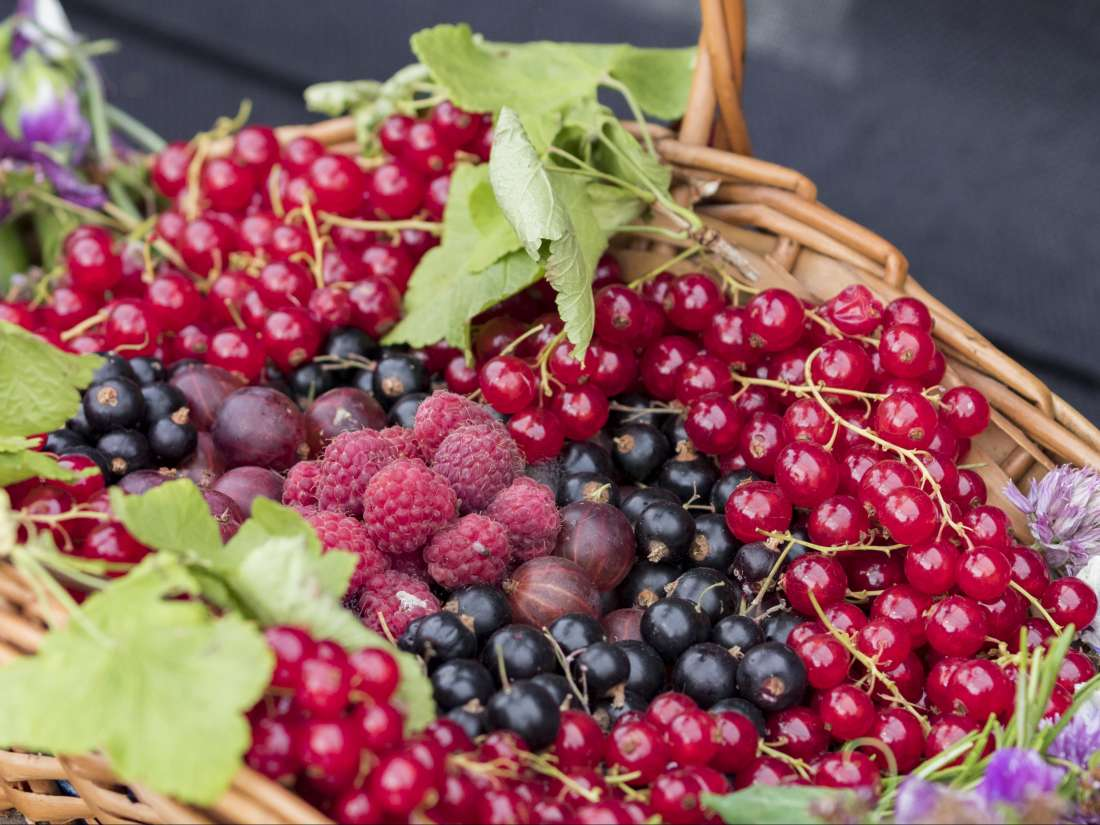 Um Pigmento Natural Pode Ajudar a Diminuir o Risco de Doenças Cardiovasculares