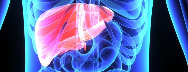 Cirrose e Risco de Câncer de Fígado São Maiores em Pessoas Com Diabetes Tipo 2