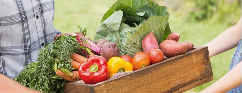 Terapia Nutricional para Adultos com Diabetes ou Prediabetes