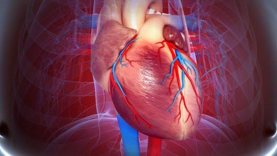 Fatores de Risco Diferem Entre as Primeiras Manifestações de Doenças Cardiovasculares no Diabetes Tipo 1