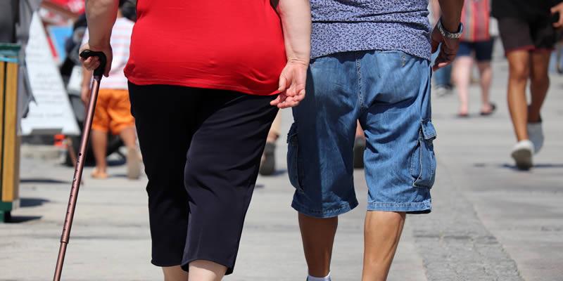 O Dilema do Tratamento da Obesidade: Por Que Fazer Dieta é a Resposta e o Problema? Uma Visão Geral Mecanicista