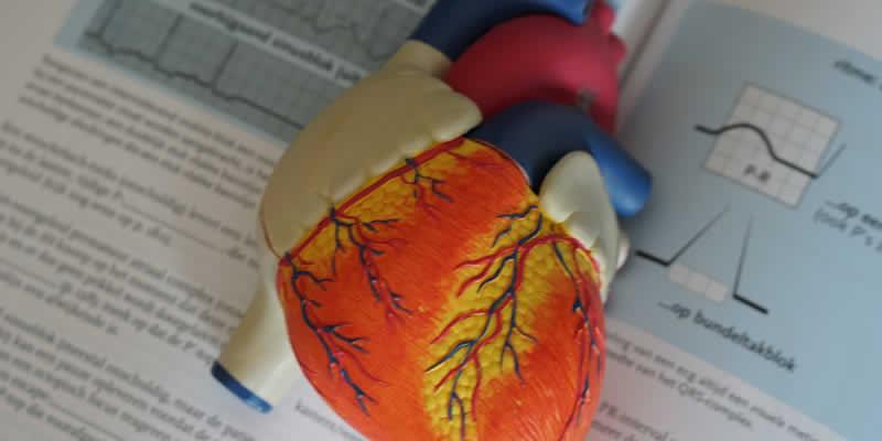 Pesquisadores Afirmam: Hipertensão Resistente a Medicamentos é Melhorada por Modificações no Estilo de Vida Saudável