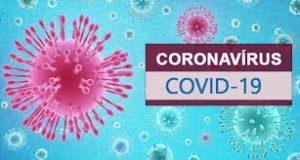 Reinfecção por Coronavírus: Quanto Tempo Pode Durar a 'Imunidade Natural'?
